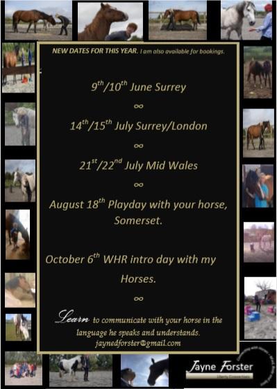 dates flyer